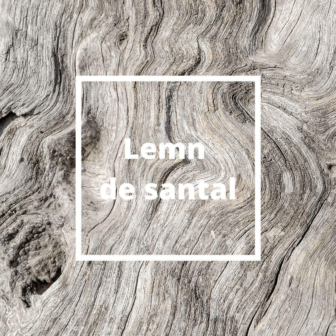 lemn de santal parfum