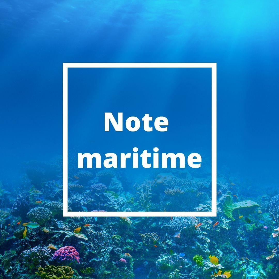 note maritime parfum