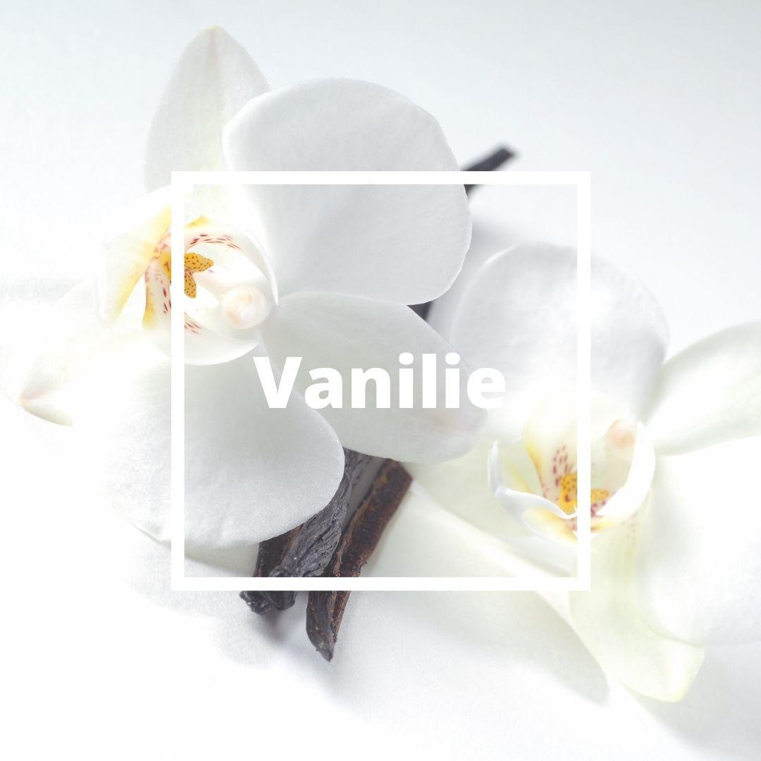 Vanilie / LÂATELIERO